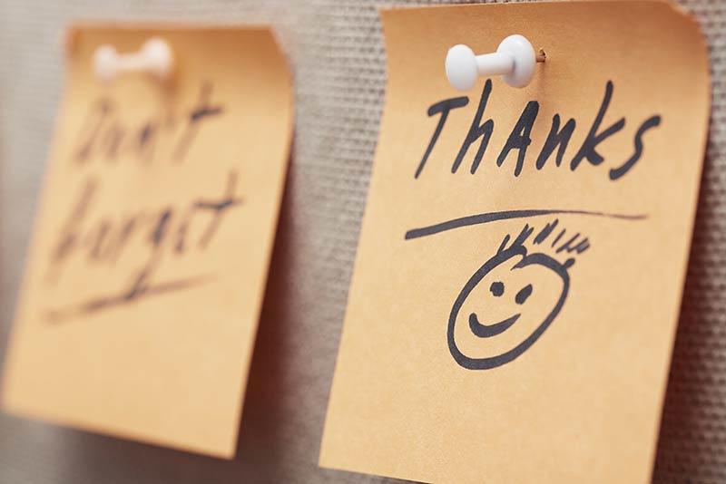 Feeling gratitude every day